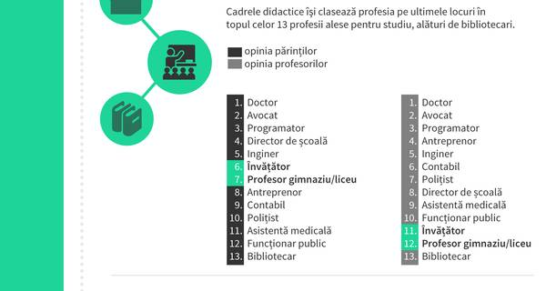 infografic_status_profesori